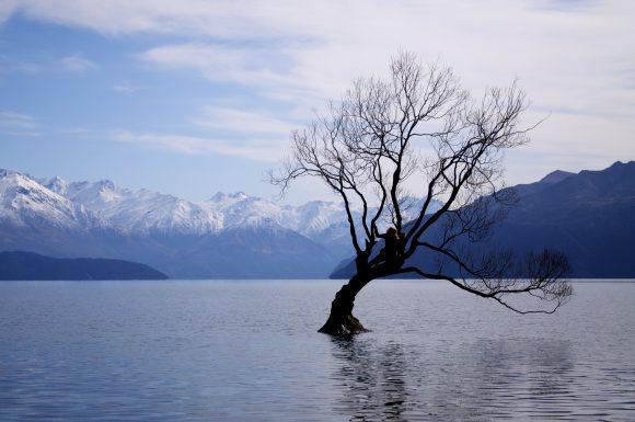 a-girl-and-the-solitary-tree-of-lake-wanaka