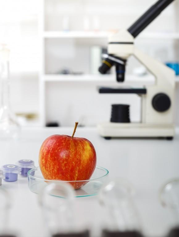 apple in laborartory