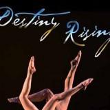 Art for Destiny Rising.