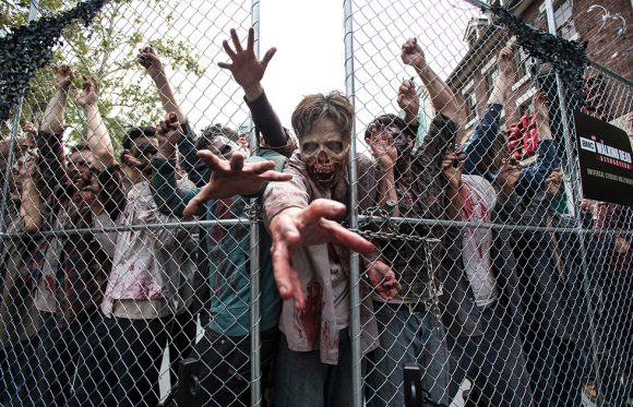 Surviving The End Of The World Five Zombie Movies Shows