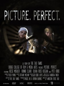 Picture Perfect Thesis Poster