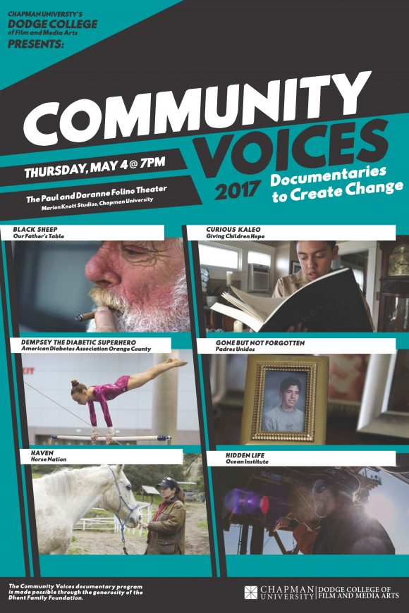 Community Voices 2017