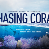 'Chasing Coral' documentary promo poster