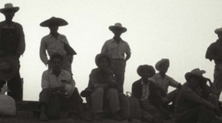 Harvest of Loneliness: The Bracero Program film image