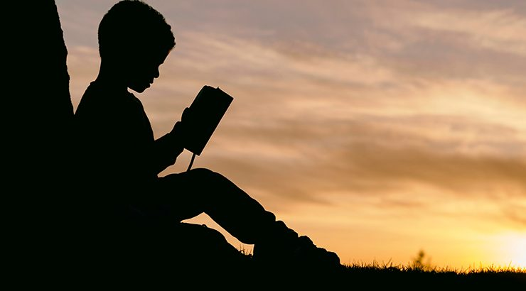 Child reading in a field at sunset silhouette