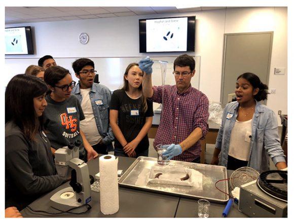 Chapman hagfish lab