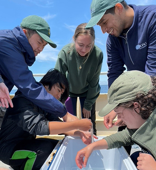 Teachers looking at hagfish slime on a boat in Maine