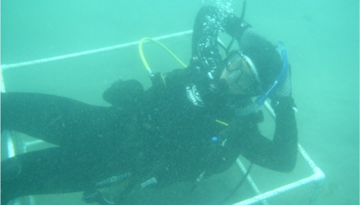 John Berriman '11 scuba diving