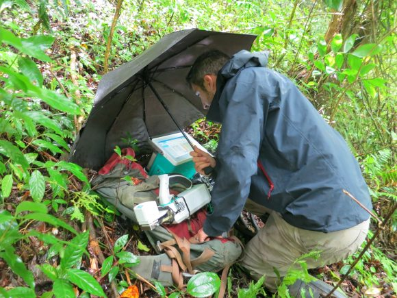 Dr. Goldsmith doing research in Costa Rica