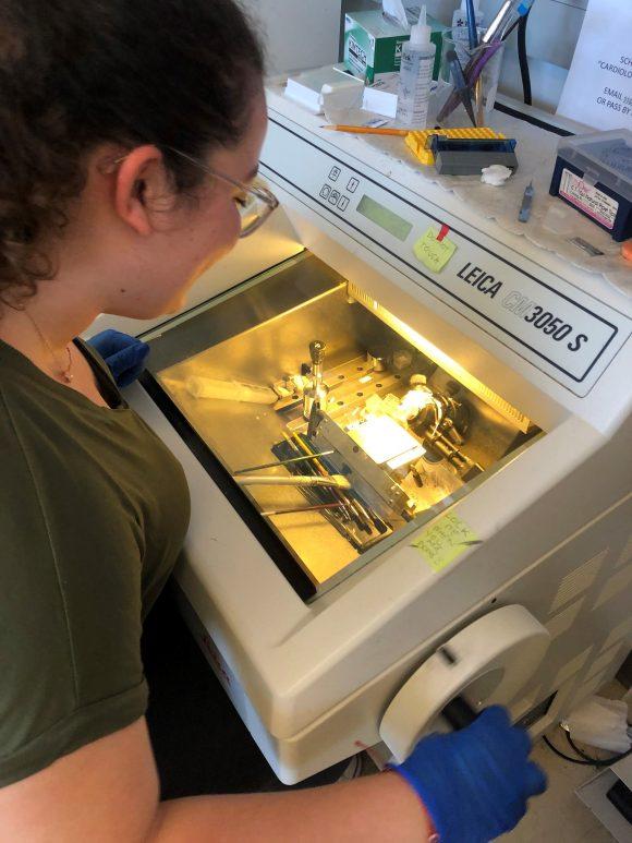 Rosita Saul in lab