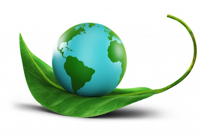 restore and conserve get involved environmental preservation globe resting on a green leaf