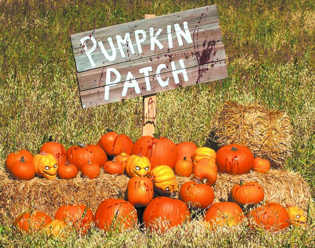 Pumpkin Patch sign, pumpkins on bales of hay, some pumpkins have faces on them