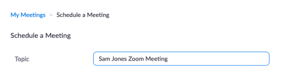 Zoom Meeting view