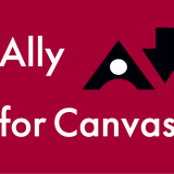 Ally for Canvas