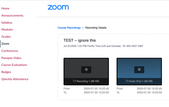 canvas videos zoom options