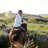 +Looking back on horseback