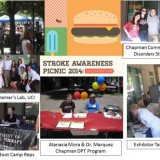 Stroke Awareness Picnic collage