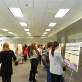Student boards at Research Day