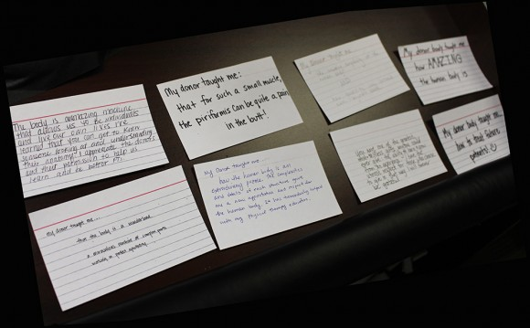 Index Cards explaining what a Donor taught students
