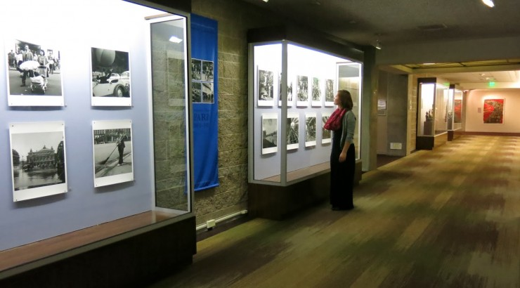 person looking at display case