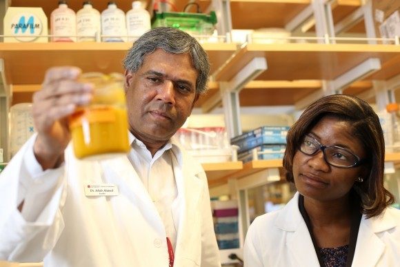 Dean Jordan announces CUSP Student Pharmacists eligible to