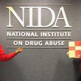 NIH APPE Rotation and Me