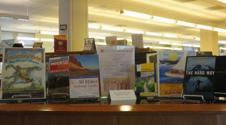 Display of summer activity-themed books on a desk