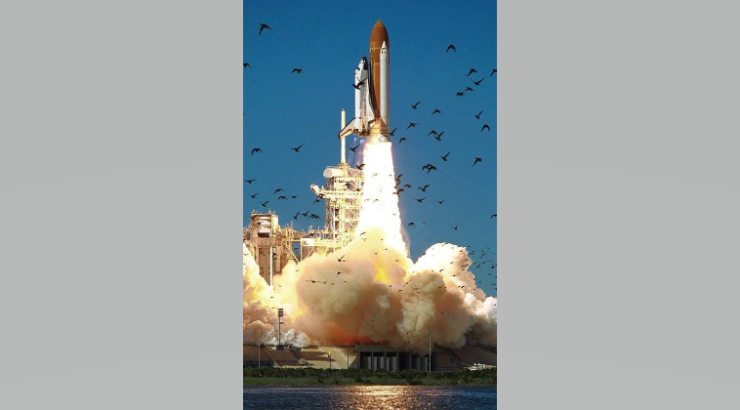 Photograph of a space shuttle taking off with a cloud of smoke below it and a flock of birds in flight in the foreground