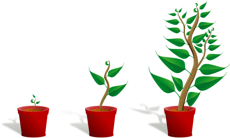 Clip art of a plant growing in a pot. In the leftmost image, the plant is a small seedling. In the middle, it is about as tall as the pot. In the third image, the plant has grown to a large size.