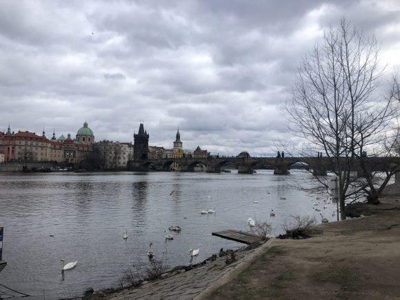 River bank in Prague