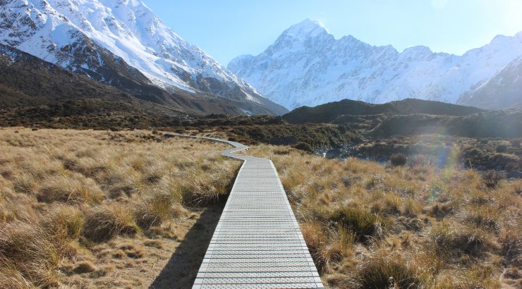 Pathway through New Zealand landscape