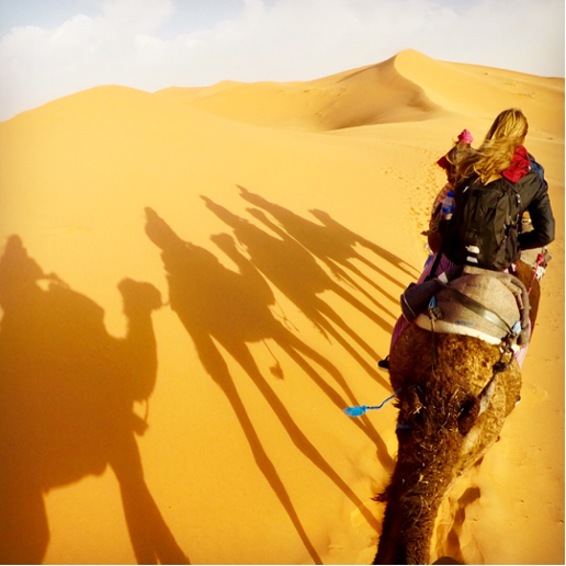 Students riding camel in desert