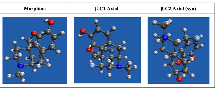 morphine molecules